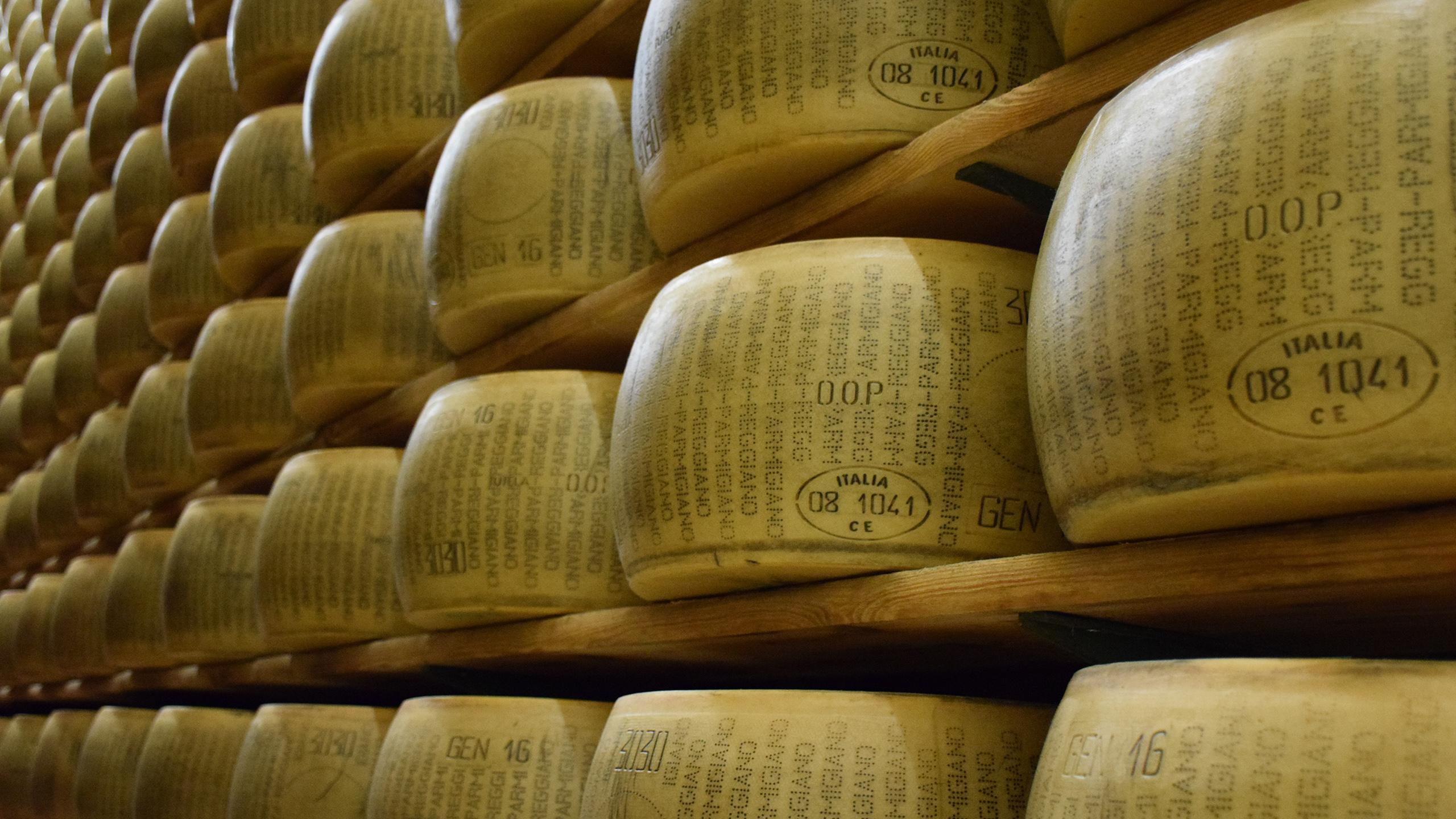 Exportaciones en mayo: fuerte caída de la leche en polvo, suba en quesos