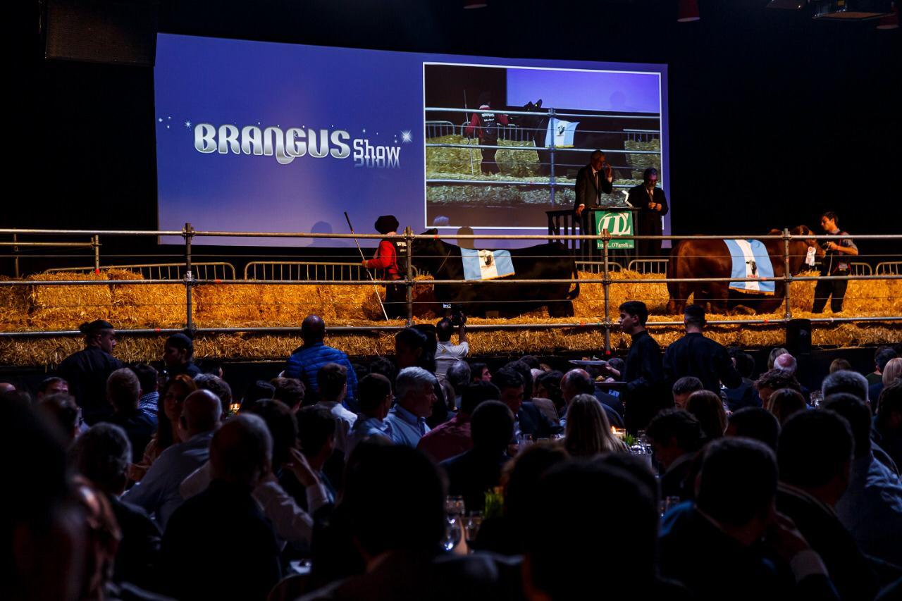 Brangus Show en Palermo 2019: ventas en remate por $ 19 millones