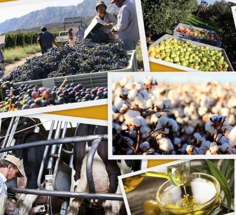 El Semáforo de Coninagro: se mantiene «verde» y «crecimiento» para la leche en julio 2019