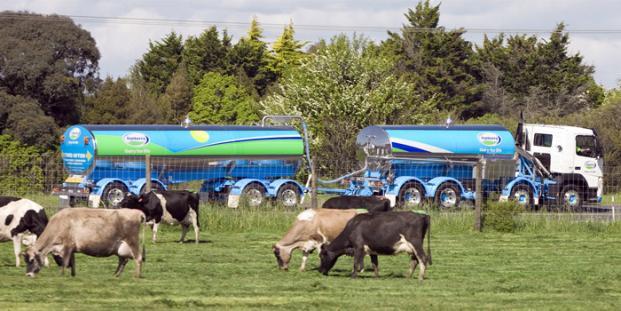 La producción de leche en Nueva Zelanda tocaría los 22 M/ton en 2020