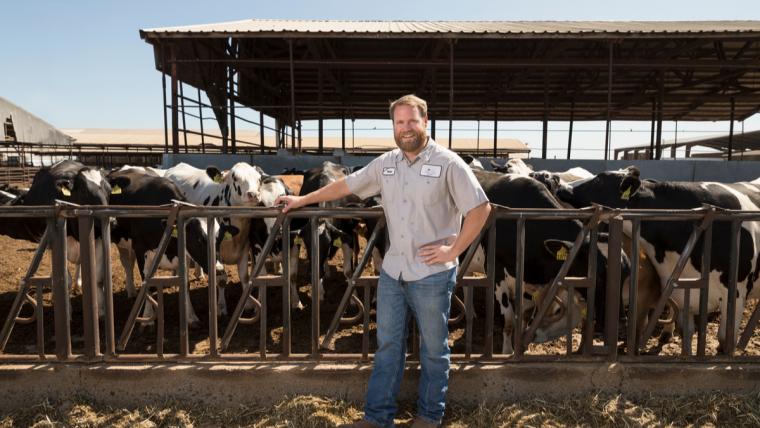 Digestores de metano convierten desechos de vacas en electricidad en California