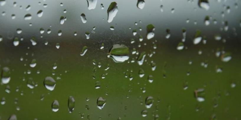Las últimas lluvias fueron escasas y la sequía afecta al 75% de Buenos Aires