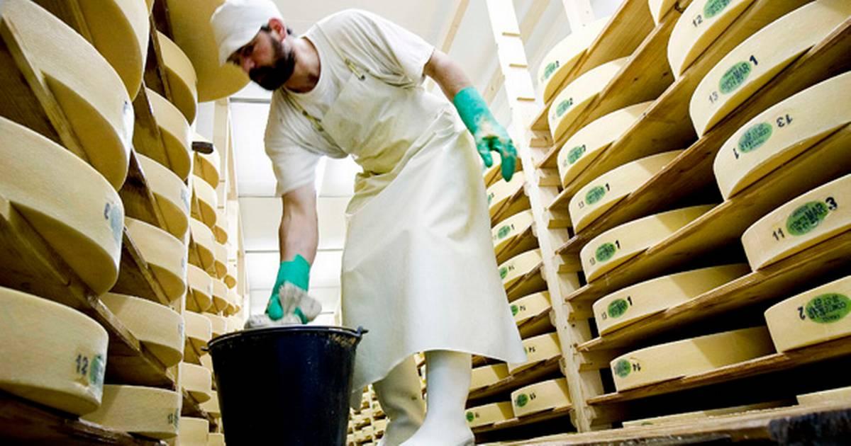 Dinamarca: Arla Foods apuesta a la mozzarella e invierte u$s 89 M