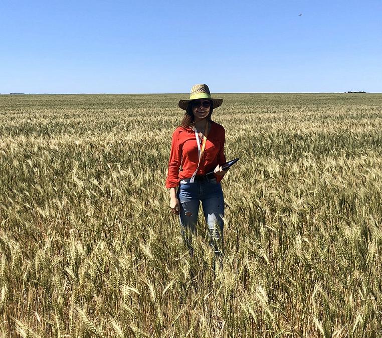 Córdoba requiere lluvias de manera imperiosa para cultivos y siembra