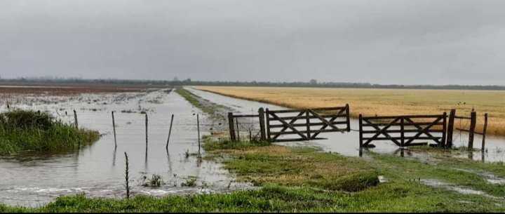 Intensas lluvias en sur de Santa Fe y Entre Ríos, y el noreste bonarense. Tornado en Colón