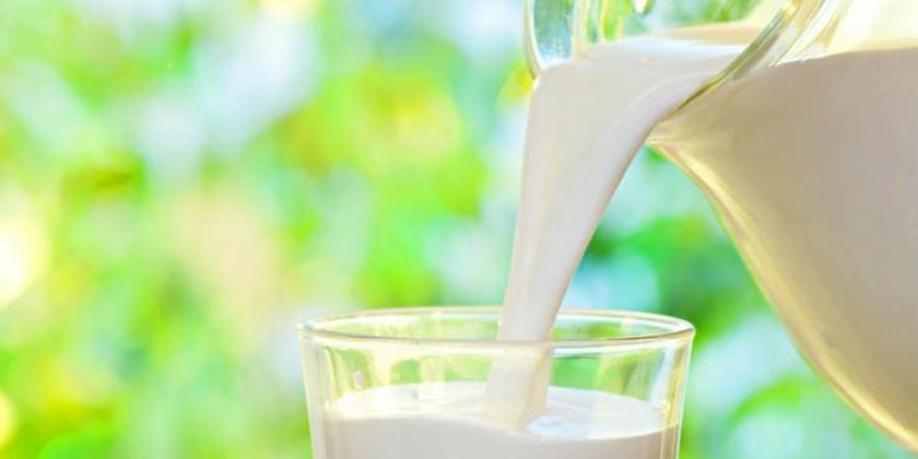 La producción de leche en octubre subió a 1.021 M/litros
