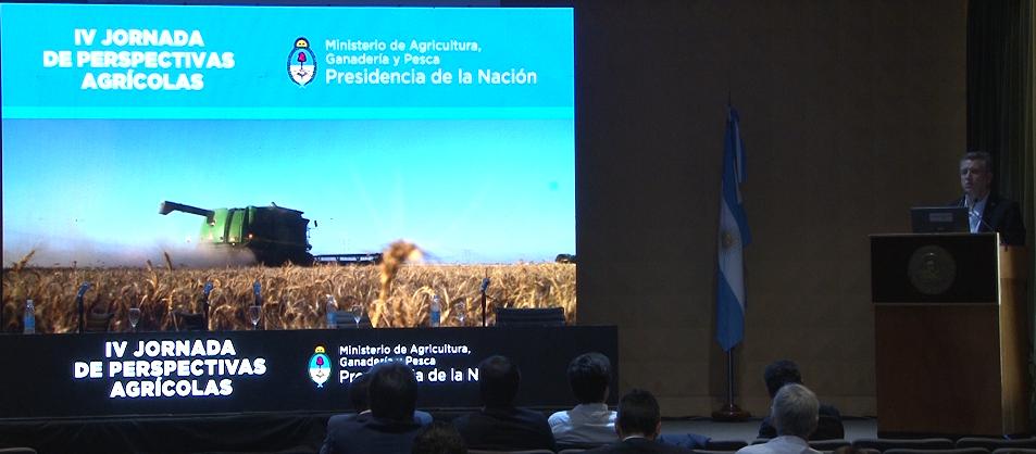 Agriculura proyecta una cosecha de maíz de 52,9 M/tn para el ciclo 19-20