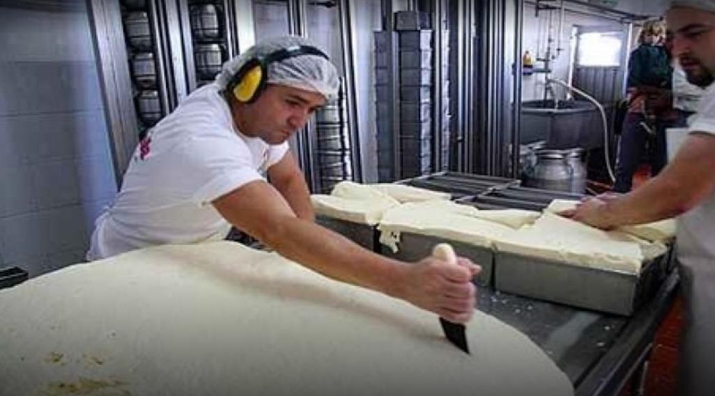 La leche se pagó $ 16,43 en noviembre '19. Cayó 11% la venta interna y la exportación
