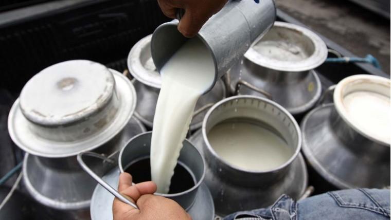 En enero '20, el precio de la leche para tambos fue de $ 17,26 por litro