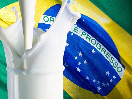 Desafíos y oportunidades de la cadena lechera en Brasil