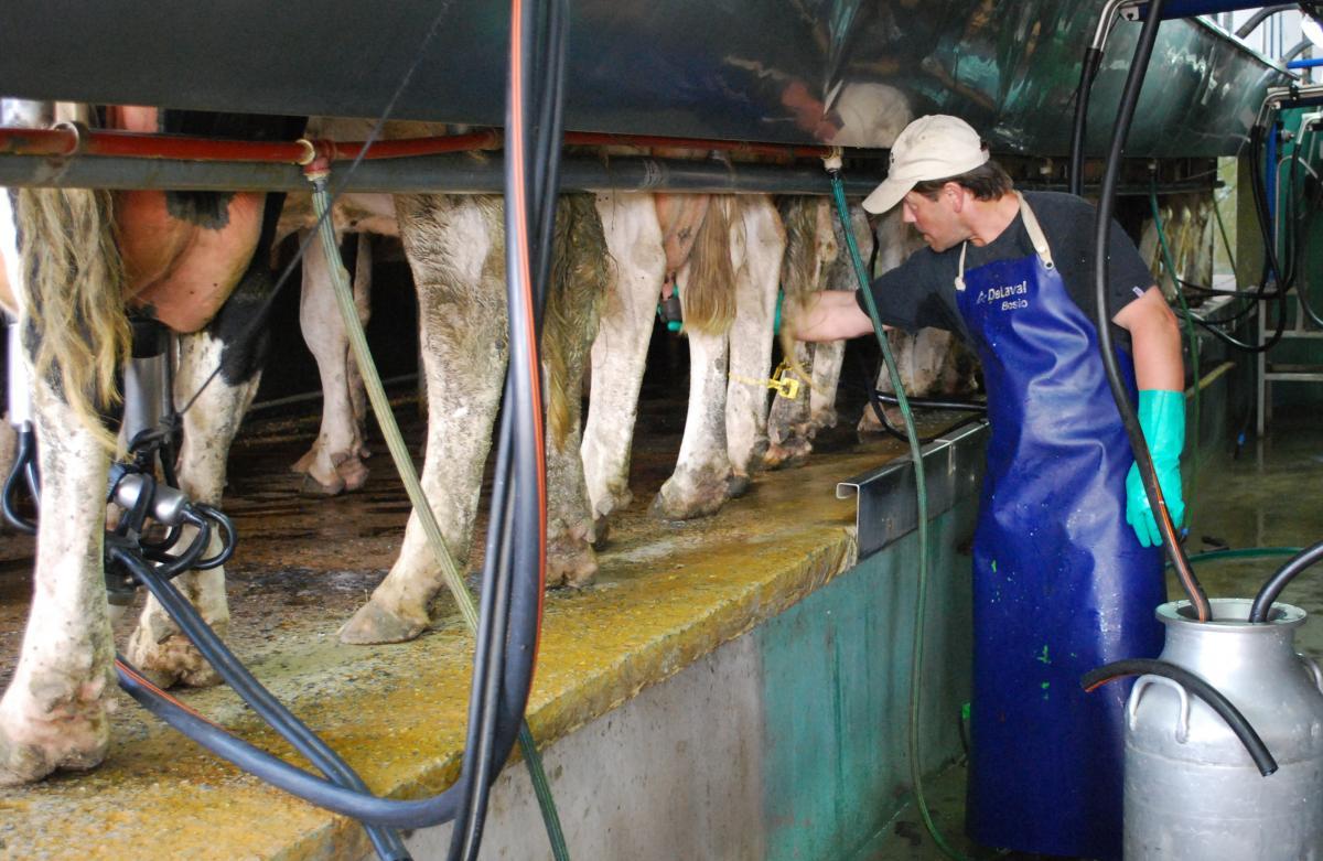 Caprolecoba instó a «potenciar el consumo interno y exportar todo lo posible»
