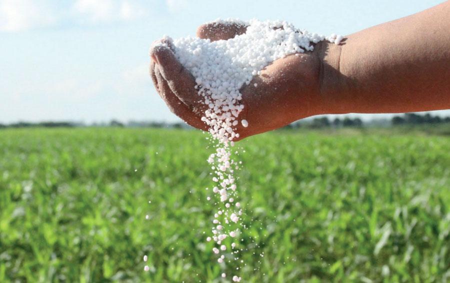 Recomiendan aprovechar los valores actuales de insumos para el agro