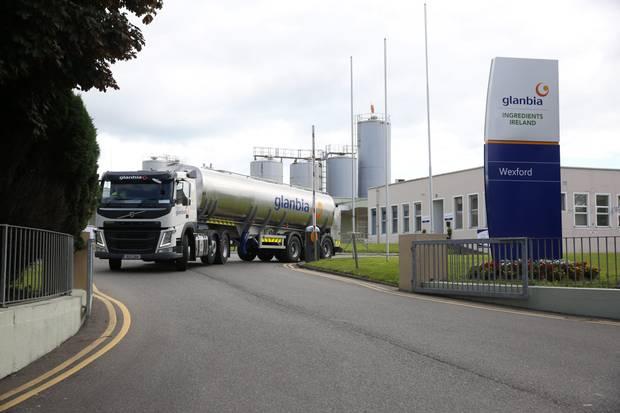 En Irlanda, la lechería no para: los tambos siguen su ciclo y las usinas «mantienen la rueda girando»