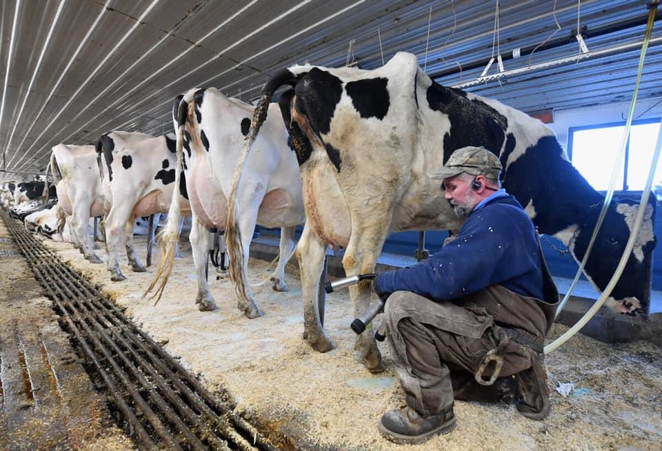 Pennsylvania exigió a supermercados que no pongan límite a la venta de leche