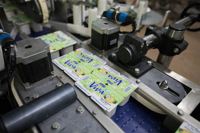 Tamberos de Uruguay denuncian pérdida de producción por medidas gremiales