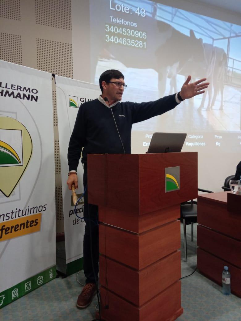 «La Lehmann» realizó tercer remate online: el máximo para toros holando fue de $ 234 mil