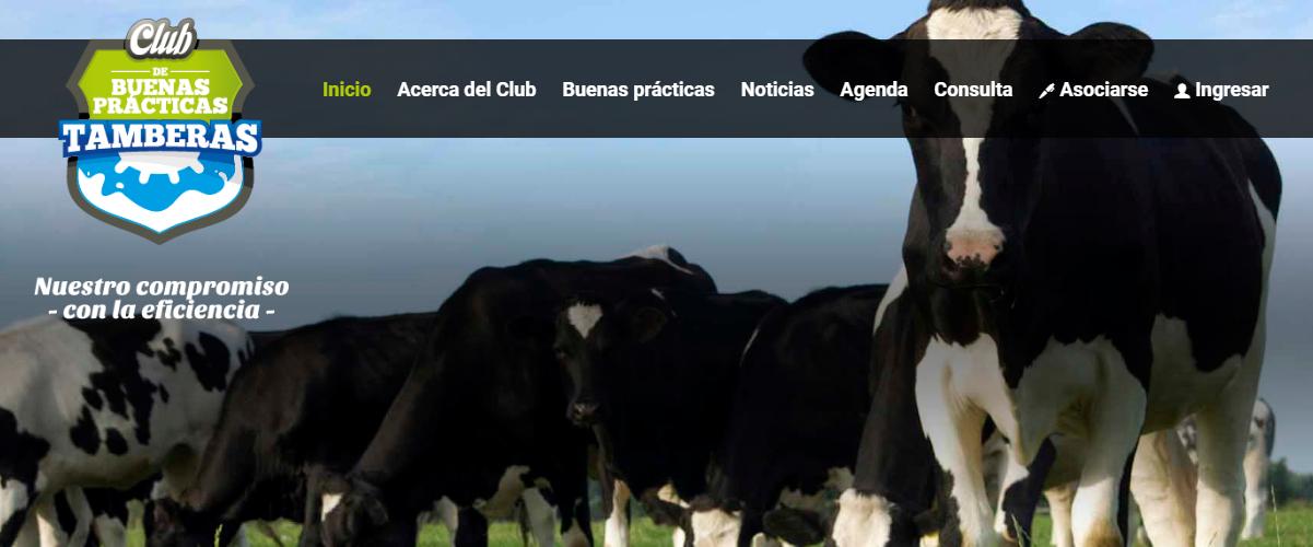 Club del Tambero: promueve buenas prácticas en la producción láctea
