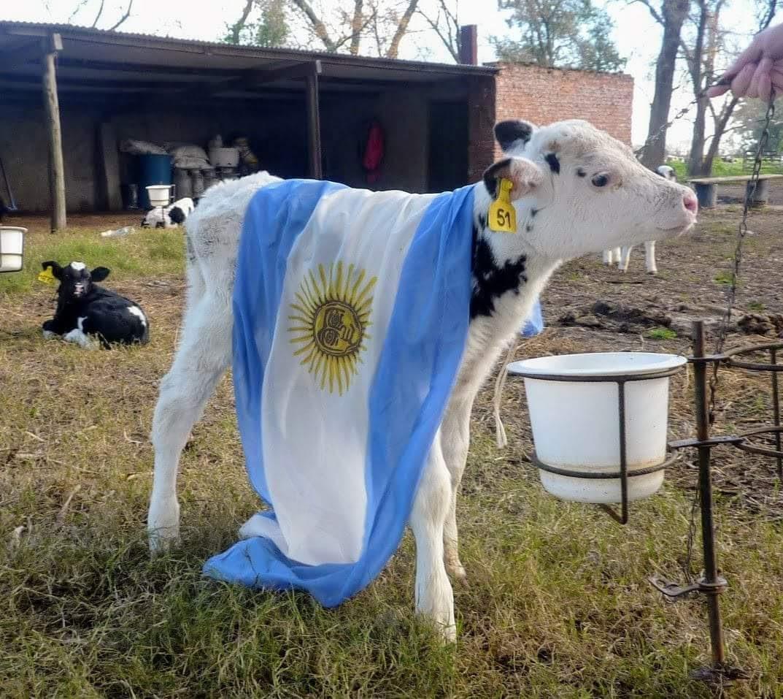 Feliz Día de la Bandera de la Argentina, creada por Manuel Belgrano