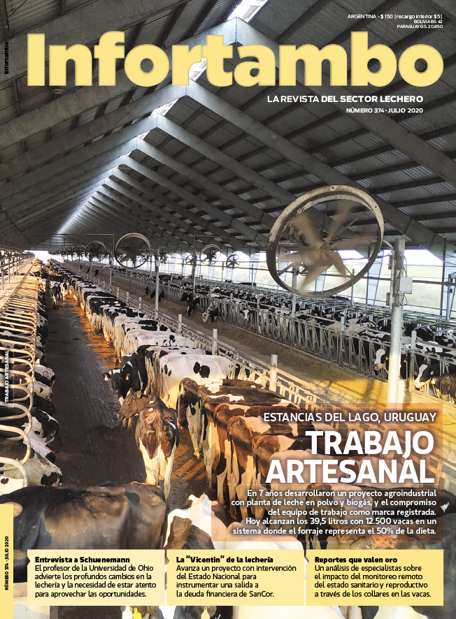 Revista Infortambo 374_Julio 2020