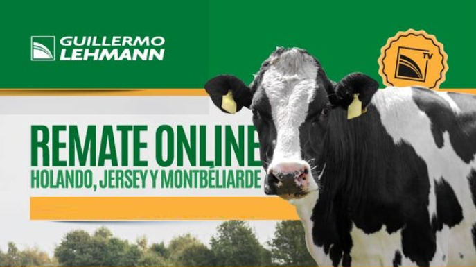 'La Lehmann' quinto remate online: Vaquillonas a $ 165 mil y Toros a $ 300 mil