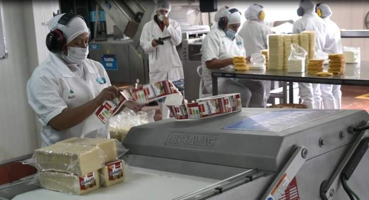 Existencias de Productos Lácteos a julio'20, presentó merma del 10% respecto a diciembre '19