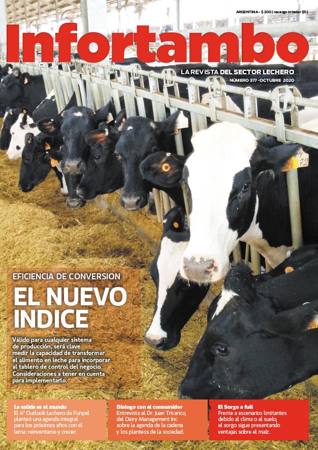 Revista Infortambo 377 Octubre 2020