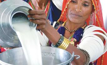 India y su objetivo de alcanzar el autoconsumo en lácteos