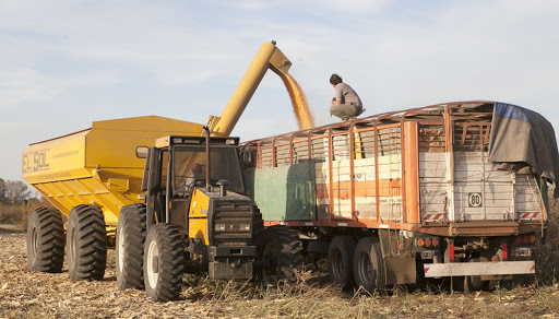 Por volumen y precio, la contribución al fisco del agro será récord en el 2021