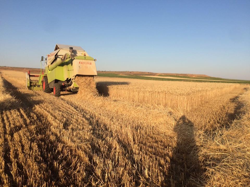 El riesgo de incendios está latente ante la seca que sufren los cultivos