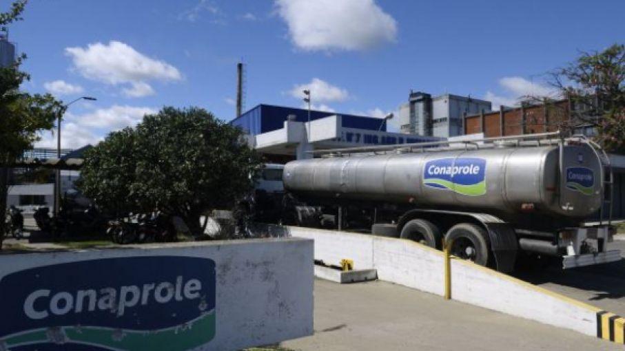 En Uruguay, Conaprole duplicó bonificación estacional en pago de leche a sus tambos
