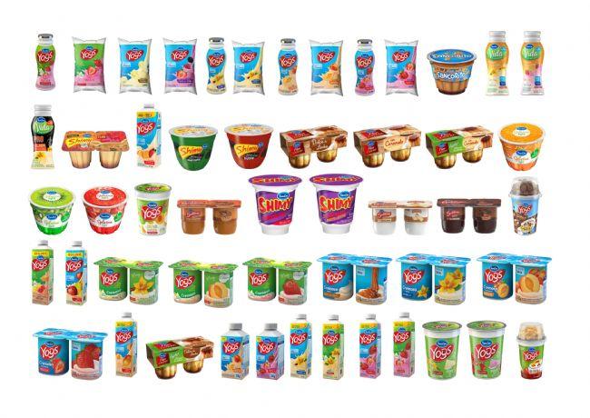 ARSA ofrece sus principales activos: las marcas de yogures y postres SanCor