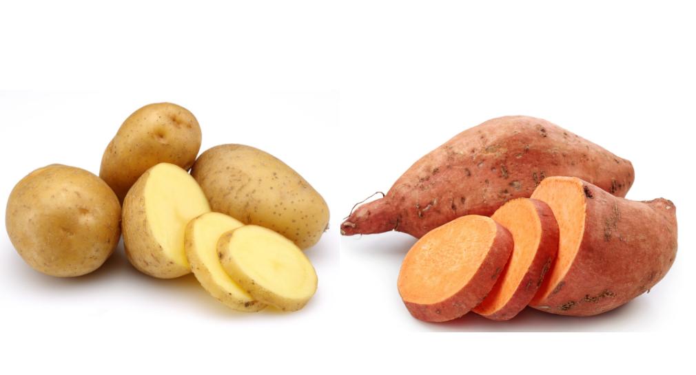 Especialistas del INTA ponderan uso de papa y batata en alimentación de vacas lecheras