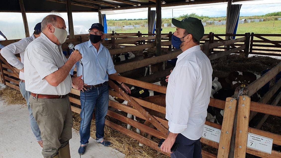 La lechería entrerriana pide a la Nación políticas a largo plazo y precio por calidad