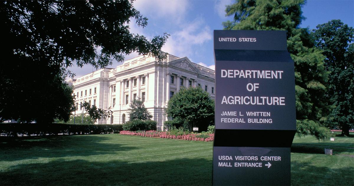 Se esperan mañana nuevos datos del USDA sobre mercado mundial de granos