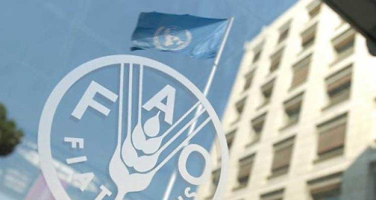 FAO: los precios de los lácteos cayeron en julio '21 por segundo mes consecutivo