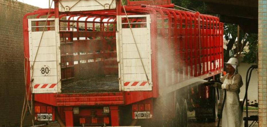 El lavado y desinfección del transporte de hacienda previene enfermedades