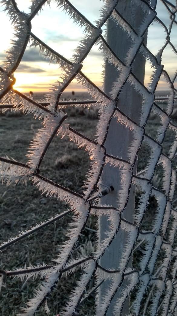 En toda la provincia de Córdoba se registraron heladas de menos tres grados