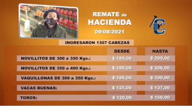 El precios de los gordos livianos tocan los $ 206 y la invernada, hasta $ 238