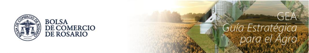 El maíz 2021/22 larga con la siembra y suma 100 mil hectáreas más de área cubierta